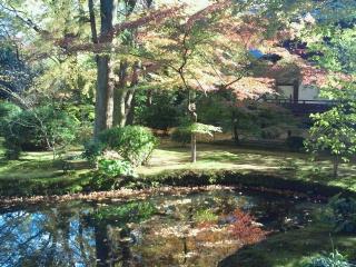 広隆寺の紅葉
